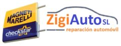 Taller ZIGIAUTO